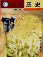 北师大版八年级历史上册