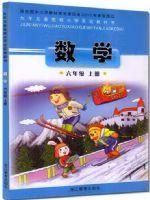 浙教版六年级数学上册